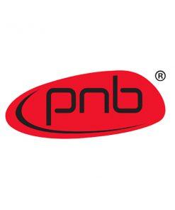 PNB Professional